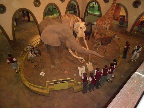 school children at Nairobi National Museum