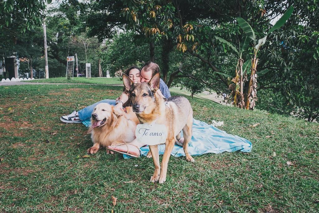 Andreia Brescancini, conexão casamento, E-session, ensaio com cachorros, Ensaios, Família,