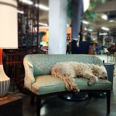 A sleepy hump day at Grand Marketplace.