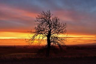 Duns Law Sunrise