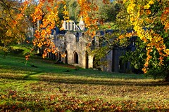 Peeping (wivvy is getting there.) Tags: autumn trees parks fountainsabbey studleyroyal x100s