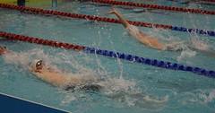 Day 3- Scottish Gas National Short Course Championships (scottishswim) Tags: speedo