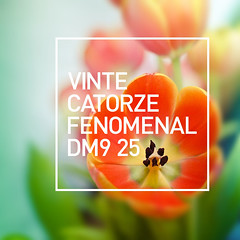 vintecatorze fenomenal_DM9 25 (pigattodesign) Tags: life reveillon flowers blur flower color nature beauty typography design graphicdesign fantastic artwork focus artist message arte amor faith 14 flor esperana cargo vida ceo amizade tribute 20 portfolio gratitude novo vector 25anos ano rveillon tipografia anonovo happynewyear f catorze 25years attenzione 2014 vinte despertar phenomenal respeito dm9 dm9ddb designgrfico fenomenal gratido tumblr pigattodesign cubagallery cargocollective jocaguanaes eduardopigatto attenzionedesign vintecatorze