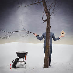 352/365 - Dinner (loganzillmer) Tags: snow tree birdhouse fineartphotography surrealphotography conceptualphotography