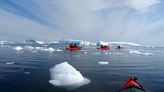 Antarctica (Dan Cosmin) Tags: blue sun ice water penguins kayak outdoor antarctica seal kayaking whale iceberg