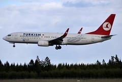 Turkish TC-JHA, OSL ENGM Gardermoen (Inger Bjrndal Foss) Tags: norway boeing turkish osl gardermoen 737 engm tcjha