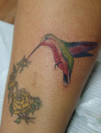 2131b929b Yellow Rose N Hummingbird Tattoo Ideas Design #001 (tattoos_addict) Tags:  rose yellow