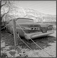Backside_Hasselblad (ksadjina) Tags: winter 6x6 film analog austria blackwhite scan oldtimer rodinal tyrol haiming hasselblad500cm silverfast kodak100tmax nikonsupercoolscan9000ed carlzeissdistagon40mmf14 oiler69
