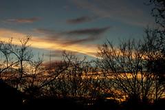 Dark Silhouette (amyhector113) Tags: blue trees sunset sky orange black silhouette photoshop dark this evening time random dusk edited free why easy simple took yah idk