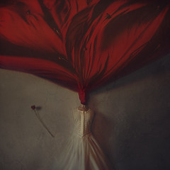 the rose garden (brookeshaden) Tags: roses selfportrait flower rose fairytale blood dress antique falling imagination whitewall fineartphotography flowergarden blankspace conceptualphotography redfabric therosegarden brookeshaden