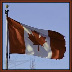 OH, Canada (zawaski) Tags: canada calgary art beautiful gallery ambientlight noflash alberta esker canonefs18200mmf3556is robertzawaski zawaski2015 robert robertzawaski2016 zawaski2016