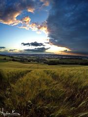 After the rain (Andrea Morico) Tags: sunset panorama field rain clouds landscape italian cornfield italia tramonto nuvole view may campo pioggia marche paesaggio brands maggio gopro campodigrano andreamorico
