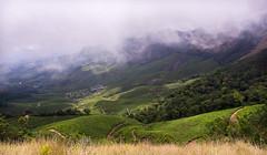 20160511-DSC03440 (infiniteframes.ryan) Tags: mist nature fog scenery hills munnar