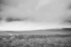 Landschaft bei Edenkoben bundw 1 (rainerneumann831) Tags: blackwhite landschaft linien edenkoben unschrfe