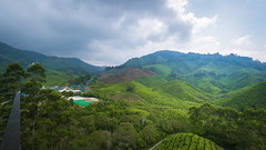 Rolling hills and ominous clouds (stratman² (2 many pix!)) Tags: canonphotography cameronhighlands efs1022mmf3545usm ultrawide eos7dmarkii scenicsnotjustlandscapes teaplantation bohteacentre cmwdgreen landscapes flickrelite bohtea plantation hill landscape mountainside foothill clouds brinchang creativecommons