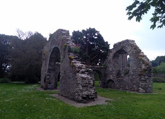 Wicklow friary (Ilkhanid) Tags: ireland wicklow wicklowtown ruins ruine ruina rovine monastery monasterio kloster klosterruine