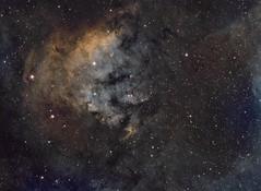 NGC7822 and Sharpless 171 SHO (frant2012) Tags: nb ha sho sii oiii