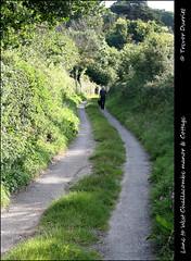 Lane to West Challacombe Manor & Cottage IMG_6073 (Trevor Durritt) Tags: england countryside devon lane dslr nationaltrust canoneos350d digitalslr dogwalker northdevon combemartin canonefs1855mmf3556 westchallacombecottage westchallacombemanor trevordurritt
