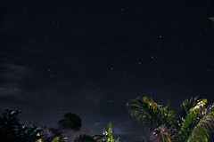 StarzTV (firas.khalifeh) Tags: tree nature night big colombia astro palm astrophotography salento bigdipper dipper
