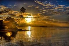 Sunset in Moorea | Photography by Vgm8383 (manbeachrm) Tags: sunrise sunrises sunrisesunset wintersunrise sunsetsunrise beforesunrise sunriseblvd tequilasunrise beautifulsunrise beachsunrise morningsunrise sunriseshell sunriseshells sunriser sunrisebeach sunrisephotography sunriselovers sunriseavenue sunriseave sunriselover sunriseoriginal sunriseporn instasunrise chasingsunrise sunrisehunter hnnsunrise sunriseoftheday sunrisereseller sunriselabel sunriseandsunsetworld piclogy