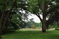 Trentham Gardens (Eddie Crutchley) Tags: trees england nature gardens outside europe staffordshire trenthamgardens greatphotographers simplysuperb