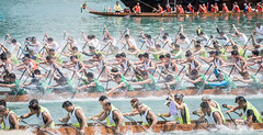 TSING YI,HONG KONG-MAY 22:Participants paddle their boats during a dragon boat race on May 22,2016 (suphachai_lonuchit) Tags: china blue people holiday toronto canada color male green tourism sports water sport june festival horizontal race river asian boats island happy hongkong boat team dragon rice bright outdoor head background traditional group chinese culture competition racing hong kong international aberdeen boating rowing leisure tradition activity oriental dim dragonboat shape dumplings waterdragon insurance sum teamwork telus dragonhead