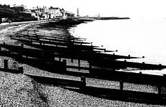 North Kent coast (anne.@wood) Tags: beach mono coast kent pebbles groynes