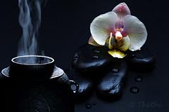 160504 tojH 160525  Thethi (thethi (don't like beta groups)) Tags: fleur eau belgium belgique hasselt zen tradition japon goutte intrieur orchide th vlaanderen srnit saveur thre faves36
