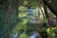 La rivire  Sillans-la-Cascade (Philis.Nat) Tags: canon la eau turquoise rivire extrieur var calme vgtation luxuriante sillanslacascade paisible eos7d bresque