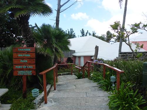 Bermuda 2016 May 142