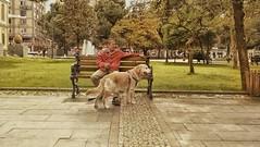 My friend and his dog... (umitremziergun) Tags: park dog pet pets green garden golden friend g4 lg beat samsun evcil ceyhun karamangil