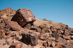 5R6K2847 (ATeshima) Tags: arizona nature havasu