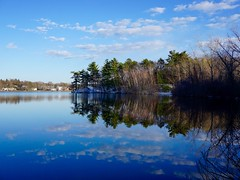 Horn Pond Reflection ((Jessica)) Tags: trees winter reflection water massachusetts newengland calm pw woburn hornpond