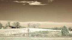Sepia Field  IR (Neal3K) Tags: trees sky sunlight abandoned barn ir northcarolina fields infraredcamera kolarivisionmodifiedcamera