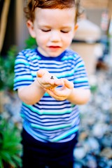 Little Wonders (Lynleigh Cooper) Tags: travel family boy summer love nature animal animals youth america children wonder fun photography nikon photographer child explorer small innocent young sigma amphibian frog depthoffield explore photograph tiny discovery traveler primelens nikond600
