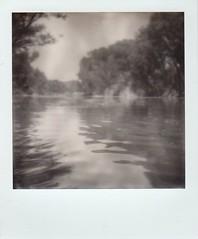 Verde River, June 19 (EllenJo) Tags: bw polaroid sx70 verderiver autofocus cottonwoodarizona 2016 june19 jailtrail instantfilm ellenjo summerinarizona ellenjoroberts impossibleproject theimpossibleproject