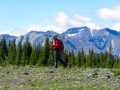Jumpiingpound Mountain Hike - Larry's cruising along (benlarhome) Tags: mountain canada montagne trekking trek kananaskis rockies hiking path hike trail alberta rockymountain gebirge jumpingpound