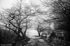 (Giorgos-S) Tags: blackandwhite landscape fuji hellas athens parnitha x100