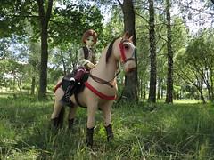 IMG_4535 (xaskixarf) Tags: horse kyle bjd wish jointed battat dollleaves