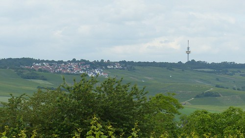 Blick auf Essenheim