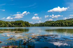 Radnor Lake (mikerhicks) Tags: canoneos7dmkii hdr landscape nashville oakhillestates photography radnorlake radnorlakestatenaturalarea sigma18250mmf3563dcmacrooshsm spring tennessestateparks tennessee usa unitedstates geo:lat=3606218667 geo:lon=8680338000 geotagged outdoors geo:country=unitedstates camera:model=canoneos7dmarkii camera:make=canon exif:isospeed=100 geo:location=oakhillestates geo:city=nashville exif:focallength=18mm geo:state=tennessee exif:aperture=10 geo:lon=86803333333333 exif:model=canoneos7dmarkii exif:lens=18250mm geo:lat=36062221666667 exif:make=canon