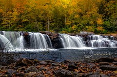 High Falls of the Cheat (kenneth alan lewis) Tags: autumn fall water river waterfall scenic foliage westvirginia cheatriver shaversfork highfalls randolphcounty