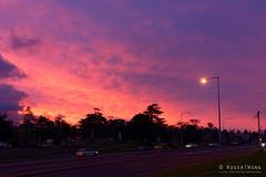 20160620-01-Sunset (Roger T Wong) Tags: sunset australia tasmania hobart cenotaph domain 2016 carlzeiss35mmf28 rogertwong sel35f28z sonyfe35mmf28zacarlzeisssonnart sonya7ii sonyilce7m2 sonyalpha7ii