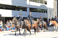 (im2fast4u2c) Tags: texas houston police parade mounted rodeo