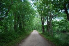 DSC_0024 (rlnv) Tags: newjersey princeton delawareandraritancanalstatepark 1855mmf3556gii nikond40x newjerseystateparks