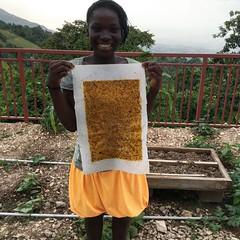 mango paper-3 (Haiti Partners) Tags: haiti adeca childrensacademy june 2016 entrepreneurship papermaking