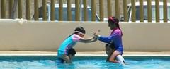 Algn tipo de juego.. (Aldo Borraz) Tags: colorgrading 2351 pool