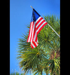 Red, White, Blue & Palms  -  Happy 4th of July (J.L. Ramsaur Photography) Tags: ocean usa beach gulfofmexico america palms photography photo sand nikon landofthefree waves florida flag americanflag bluesky pic patriotic photograph independent palmtree strong thesouth stpete revolutionary starsandstripes redwhiteblue usflag stpetebeach oldglory sunshinecity 2016 deepbluesky homeofthebrave emeraldcoast constitutionalrepublic pinellascountyfl ibeauty stpetebeachfl tennesseephotographer southernphotography screamofthephotographer jlrphotography photographyforgod alwaysinseason becauseofthebrave d7200 engineerswithcameras jlramsaurphotography nikond7200 patrioticproud