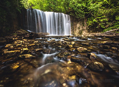 Hoggs Falls (Cale Best Photography) Tags: hoggsfalls waterfall falls waterfalls hoggs flesherton ontario canada water landscape photography nature river flow current summer forest conservation rocks stream longexposure green beauty beautiful idyllic peace peaceful calm calming windsor ca