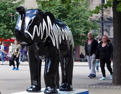 Herd of Sheffield elephant sculptures (32) (Simon Dell Photography) Tags: herdofsheffield herdof sheffield herd eliphants statues town city sculptures colorfull awsome 2016 trail see find them locations